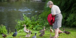 ROHA ouderenzorg